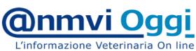 @nmviOggi Logo