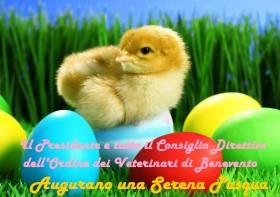 Buona Pasqua OMV BN