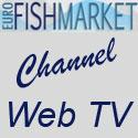 fishmarket_veterinari_benevento